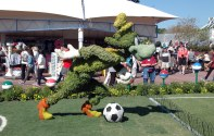 It was a pre-World Cup soccer image at the International Flower & Garden Festival in March 2014 at EPCOT in Walt Disney World when I snapped this shot.