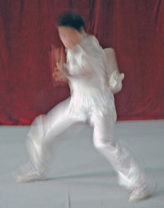 A martial artist was just a blur for my camera lens when we visited China in 2007. We got to see the martial arts display at an academy in Xi'an. We were on a trip to China with the Barron Collier High School marching band when I got this shot.