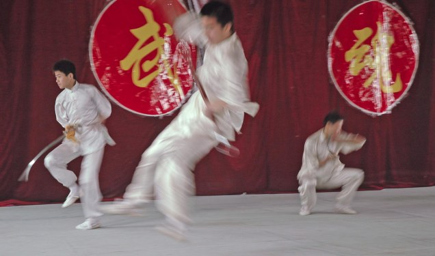 Here's another photo showing the blur of motion of a martial artist in China when we visited in 2007. We got to see the martial arts display at an academy in Xi'an. We were on a trip to China with the Barron Collier High School marching band.