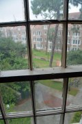 I got this shot out of a window in the stairwell at Allison's dorm building (Sledd Hall at the Murphree area) at the University of Florida on June 27, 2015. Note the very old wood frame of the window. Sledd Hall is one of the oldest dormitories on campus.