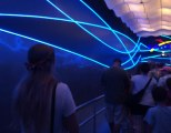 Debbie got a nice blend of colors when she got this shot of Allison in line at Soarin' at EPCOT on Aug. 16, 2015. As a family, we've come to enjoy Soarin' more than any other ride at Walt Disney World and it has brought a greater appreciation for EPCOT.