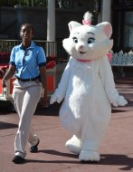 """Whenever a character makes its rounds in one of the parks at Walt Disney World, there's at least one cast member as an escort. Here's a shot of the cat """"Marie"""" with her escort at the Magic Kingdom. Allison got this shot while she and Debbie were visiting Walt Disney World on Dec. 16, 2015."""