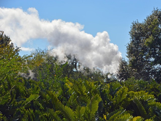 What's that smoke? Well, it's not smoke. It's steam from the Walt Disney World Railroad at the Magic Kingdom. I got this shot while riding on the Tomorrowland Transit Authority PeopleMover on Feb. 7, 2016, during a long weekend at Walt Disney World.