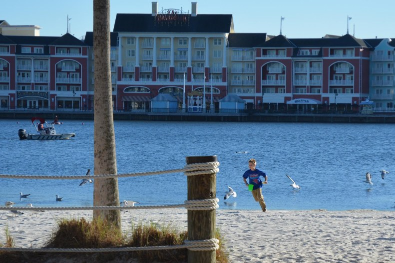 Here's a young guest chasing birds on the sand at Disney's Beach Club Resort on Feb. 5, 2016. We were at Walt Disney World for a long weekend and headed to dinner in EPCOT when I got this shot.