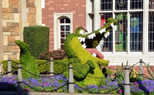 """Well, with decision by the Disney Co. to remove alligator and crocodile references from rides and the some characters from parades, I decided to reuse our photo of """"Tick-Tock"""" the crocodile in """"Peter Pan."""" Here's the original cutline: """"With Peter Pan above, the crocodile (his name is """"Tick-Tock"""") awaits at the United Kingdom Pavilion during the EPCOT International Flower & Garden Festival. Allison got this shot while she and Debbie were visiting Walt Disney World on March 16, 2015."""" And, it appears the New York Daily News somehow managed to use Allison's photo in their Disney story about the issue."""
