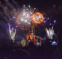 As we come to and in the spirit of the Fourth of July of 2016, I'm posting a few fireworks photos by Allison. She got some great shots of fireworks on Friday, Oct. 16, 2015, during Mickey's Not-So-Scary Halloween Party at the Magic Kingdom. Of course the fireworks go off over the Cinderella Castle at Walt Disney World. Click here for all our fireworks photos.