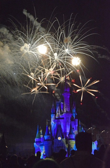 HAPPY … almost New Year! Today is New Year's Eve 2016 and we'll be moving into 2017 tomorrow. I'm posting some past photos of fireworks that Allison got in 2015. She got this one at the fireworks show on Oct. 16, 2015, during Mickey's Not-So-Scary Halloween Party at the Magic Kingdom at Walt Disney World.