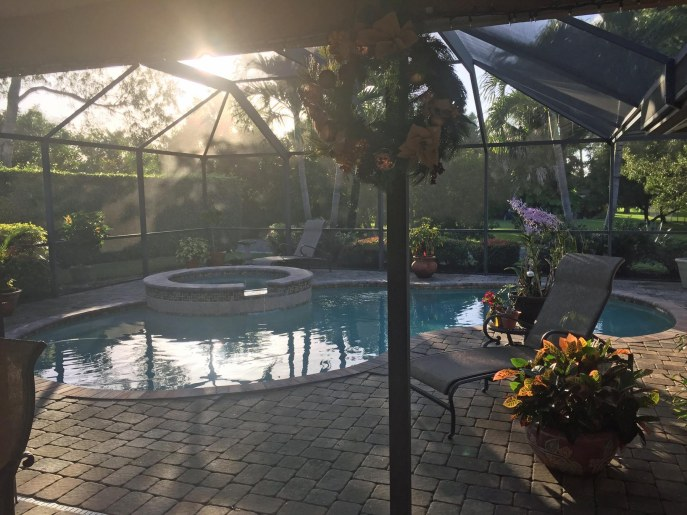 While the rest of the country is in the grip of winter's wrath (well, it's cold most places), it's sunny and warm here in Southwest Florida. I had to jump in our pool for some minor maintenance on Dec. 18, 2016, and here's what our patio looked like at the time. The water was a brisk 73 for the quick dip at our home in Naples.