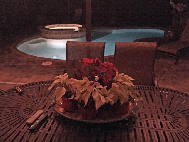 With the poinsettias getting a little droopy, you can see it's getting to be past holiday time. I got this shot on our patio on Dec. 29, 2016, as night had closed in at our home in Naples, Fla.
