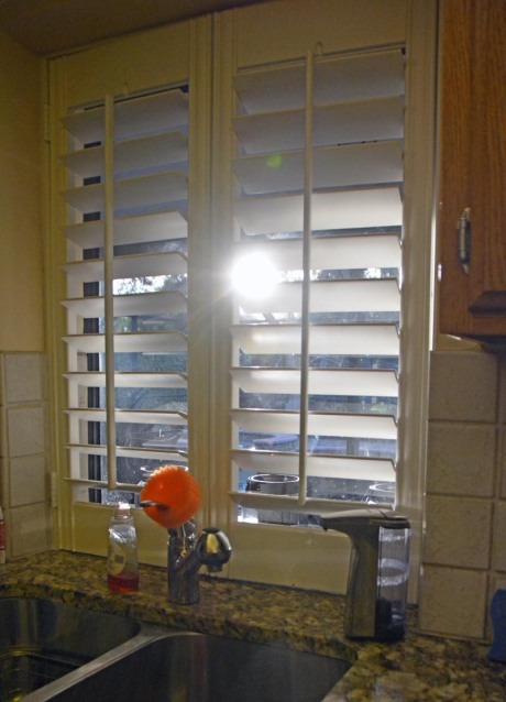 Ah, it's nice to be home and see a little sun peeking in through the kitchen window shutters. We're well on our way back to daylight savings time and brighter evenings. I got this show on Jan. 11, 2017, at our home in Naples, Fla.
