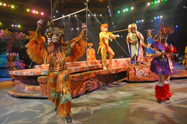 The performer closest to my Nikon has a big smile on his face during the Festival of the Lion King at the Animal Kingdom park. I got this shot on Feb. 8, 2015, during the performance. It's definitely impossible to get a bad photo at this show at Walt Disney World.