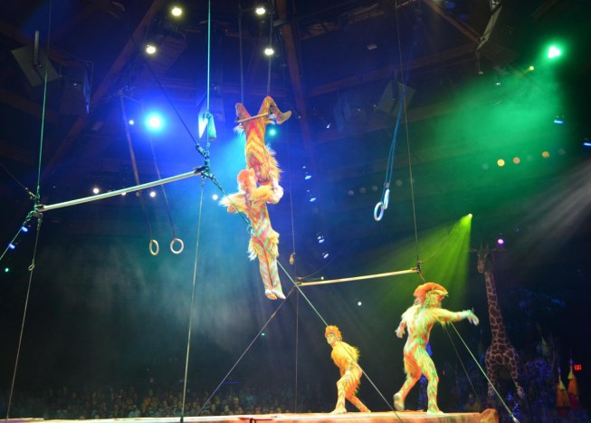 Two performers were face-to-face at the top of the acrobats' performance at the Festival of the Lion King show at the Animal Kingdom park. I got this shot on Feb. 8, 2015, while we were at Walt Disney World.