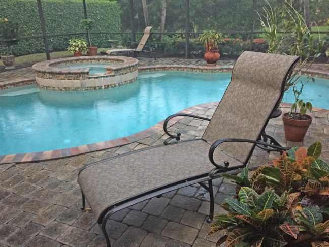 Well, it's a rarity here in Southwest Florida for the month of January, but we awoke yesterday (Jan. 29, 2017) to rain and a chilly temperature – only 50, but, hey, it's Southwest Florida. We haven't had any rain in weeks (our pool gets thirsty) and you can see the wet patio here and, if you look closely by clicking the photo twice, there are rain drops in the pool at our home in Naples.