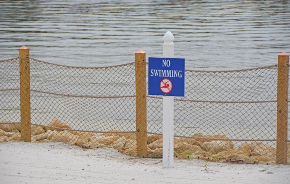 Well, after last year's tragedy of an alligator killing a toddler at Walt Disney World, the permanent signage keeping guests from potentially hazardous wildlife have evolved. After a quickie series of signs, here's what the final rock bed and rope fence looks like at the lake at Disney's Yacht Club Resort and Disney's Beach Club Resort.