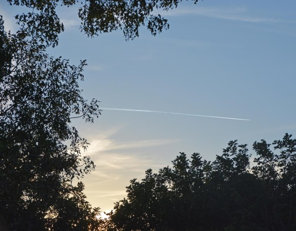 Ah, a fleeting moment … and I didn't get a good photo of this contrail. I spotted it but wasn't in a good position to properly frame it to best accentuate the sun behind. In any case, even an OK photo of a contrail is cool in my book. I got this shot at our home in Naples, Fla., on Feb. 16, 2017.