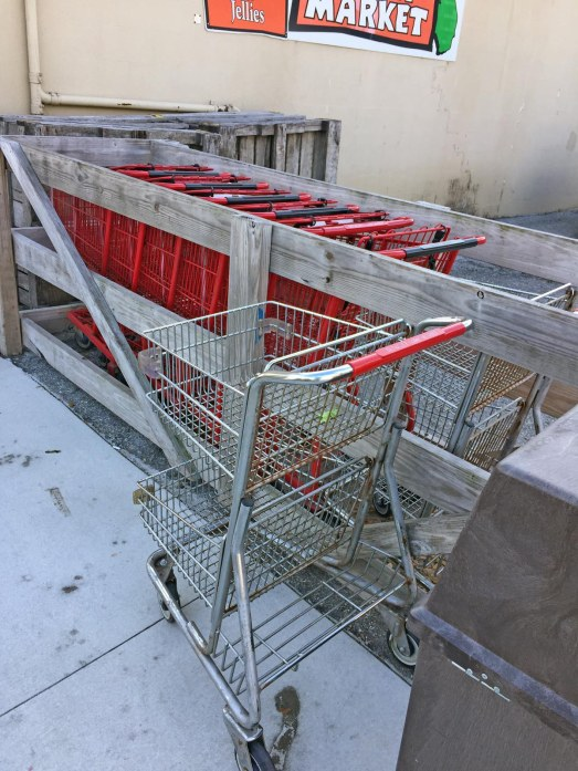 I know there are a lot of jokes about riding the short bus to school, but can the same be said for using a short shopping cart? Well, we do when we visit Detwiler's Farm Market in Sarasota. In fact, they have both chrome and painted models from which to choose, as you can see here. I got this shot Feb. 4, 2017, as we stopped on a Saturday morning.