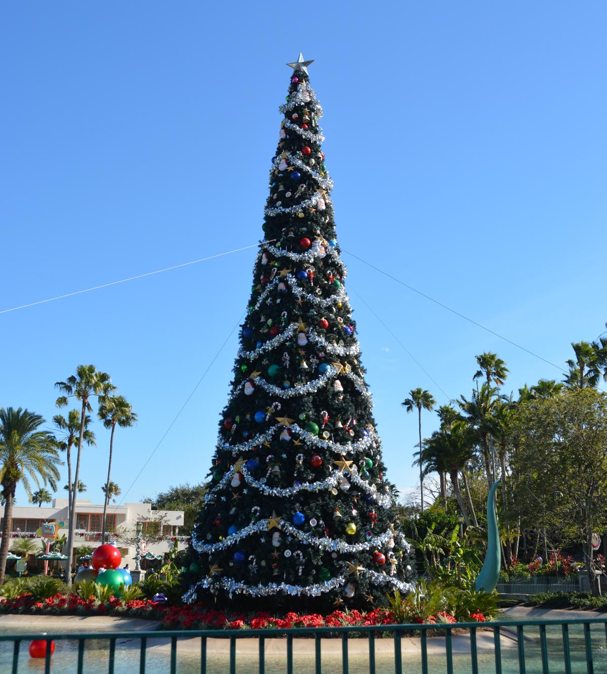 well the christmas decorations at walt disney world are down today but when we visited disneys hollywood studios on jan 6 2018 they were still up